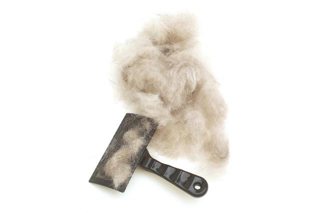 Brush for wool. Dog hair with a comb for shedding hair