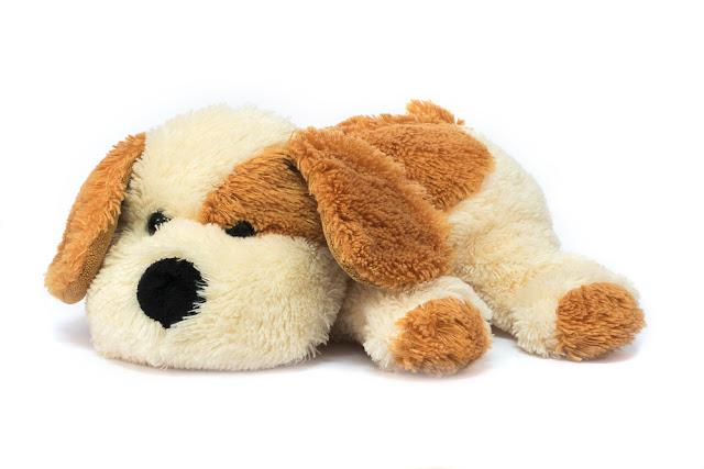 Isolated plush toy dog on white background