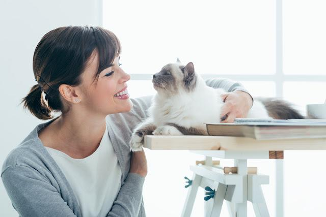 Happy smiling woman at home cuddling and holding her lovely cat on a table, pets and togetherness concept