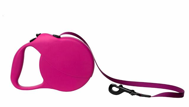 retractable leash for dog