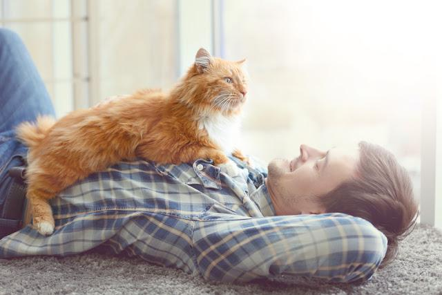 Young man with cute cat lying on floor near window